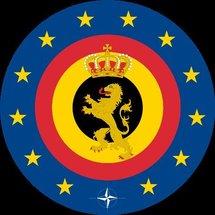 La Belgique lance l'engagement volontaire militaire pour des jeunes de moins de 26 ans